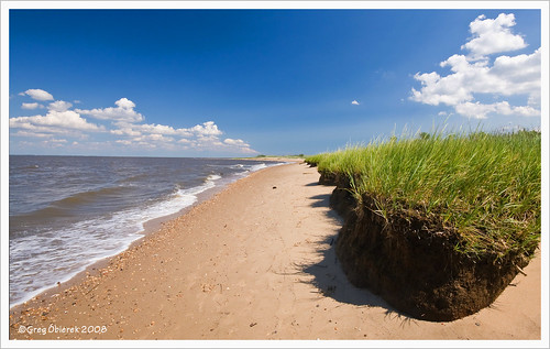 sky beach clouds canon sand sigma shore delaware 1020mm polarizer delawarebay blueribbonwinner eos30d woodlandbeach goldstaraward absolutelystunningscapes