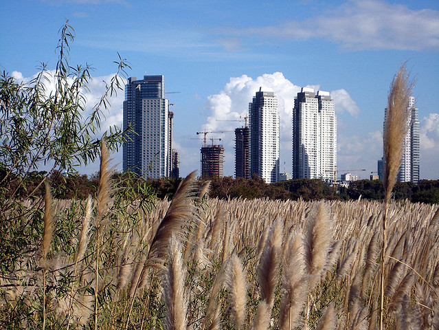 Puerto Madero from the Reserva Ecologica