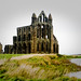 Whitby Abbey by teenytinyturkey