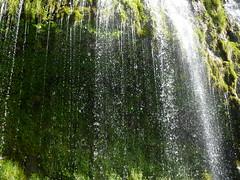 Mossprae Falls 048