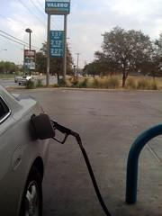 I can haz cheep gas?