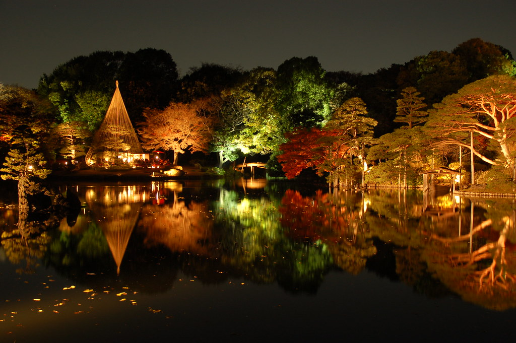 Autumn Momiji Lightup at Rikugien Tokyo
