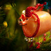 Christmas Pig by Justin Belcher