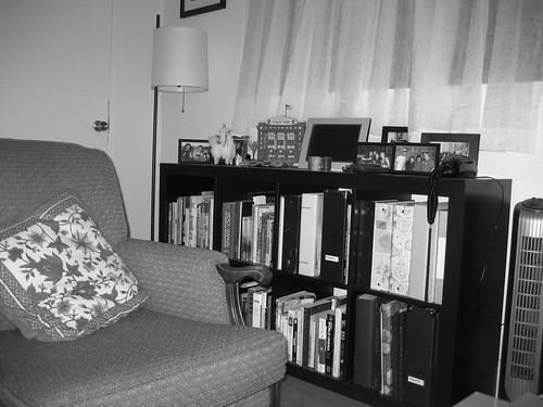 Bookshelf with Llama
