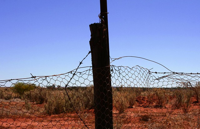 The No1 Rabbit Proof Fence