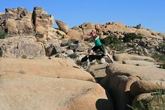 Linda & Loki jumping jumbo rocks
