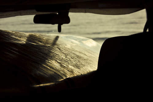 morning beach window car sunrise hawaii mirror early surfing spot location pebble surfboard wax bigisland hilo rearview viv sarahlee honolii legothenego vivantvie