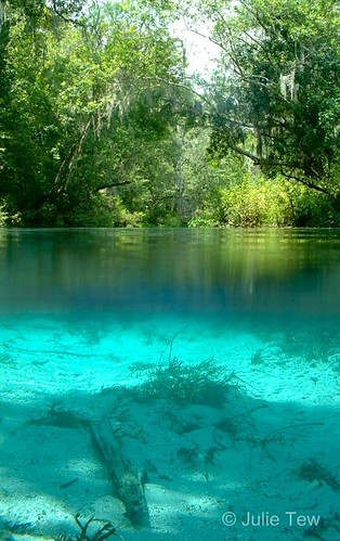 Ichetucknee River, North End