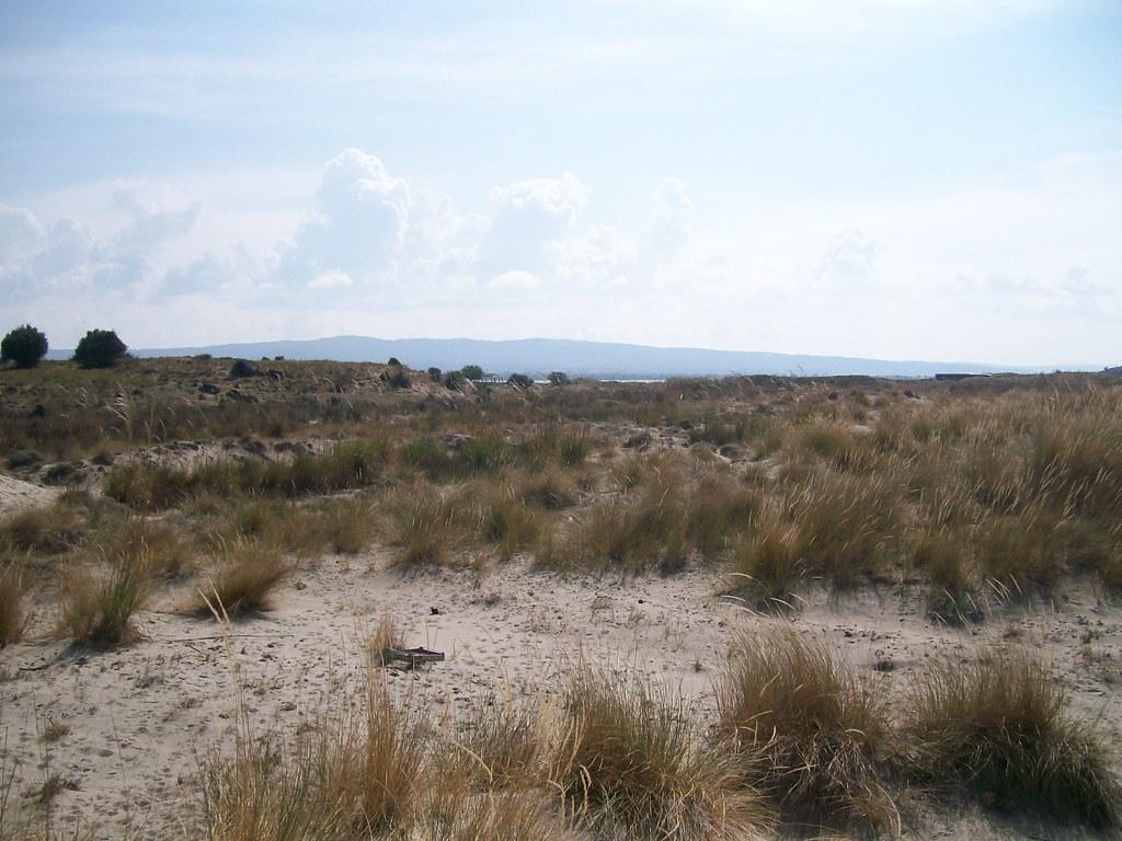 A Beach Suvla towards Hills