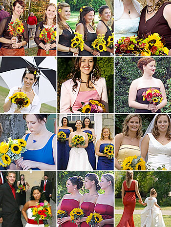 Bridesmaids and Sunflowers