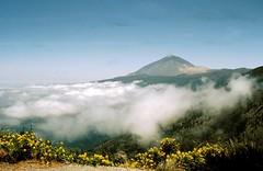 Teneriffa-Gran Canaria- Kanaren