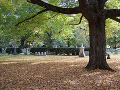 Mt. Auburn Cemetery, October 2008