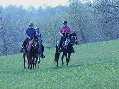Endurance riding, Endurance Riders