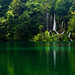 Plitvice Lakes: Visions of green