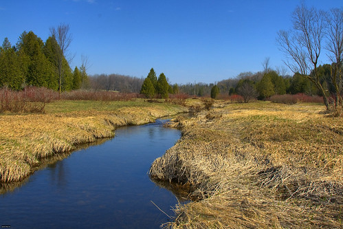 Eramosa creek by Rockin' Ray