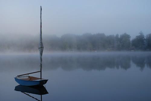 Foggy Morning (16)