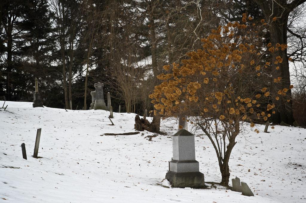 Graveyard near Ithaca Falls