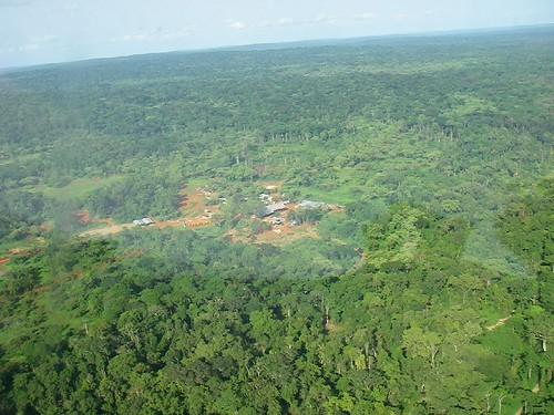 centrafrique bakouma
