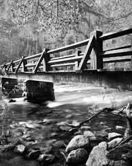 Bridge - B&W