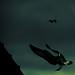 It's... Batman! by Oostra