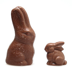 See's & Lake Champlain Milk Chocolate Rabbits