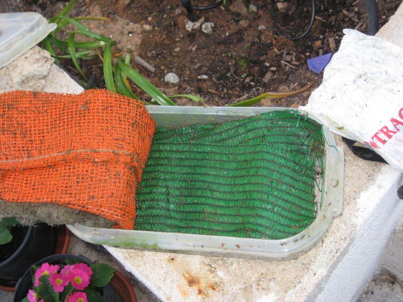 Ver tema filtro casero para estanque for Filtro casero para estanque