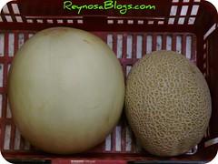 honeydew, produce, fruit, food, muskmelon, melon, gourd,