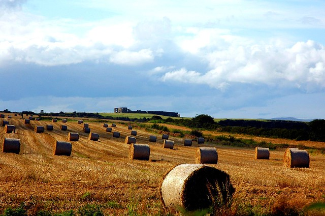 Hay Bales with a View............the end of Summer