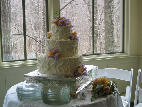 no frosting wedding cake wedding cake with no icing design flickr photo 17906