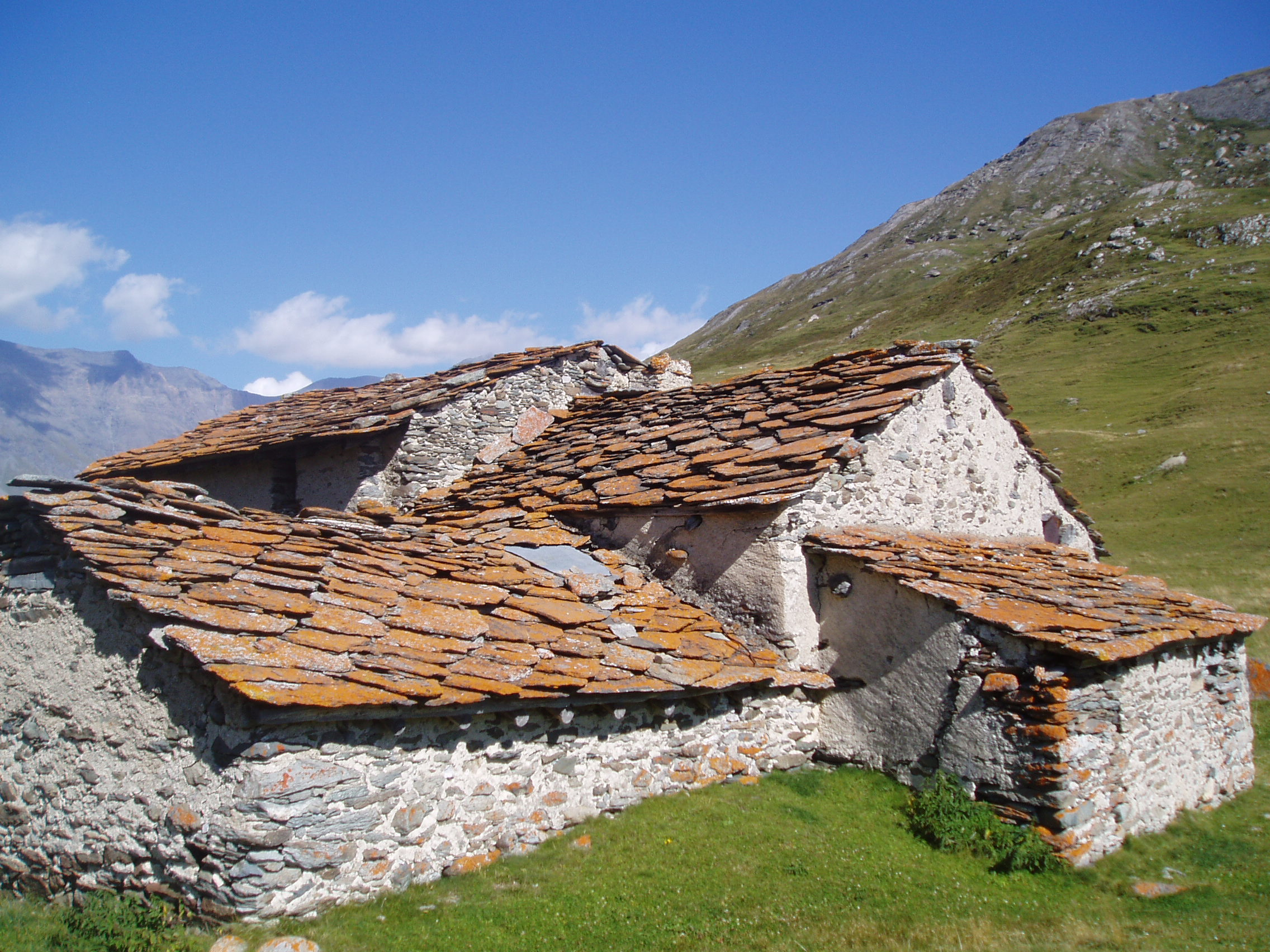 Mont Cenis, savalins © J.Jorcin-Roch, Fondation Facim