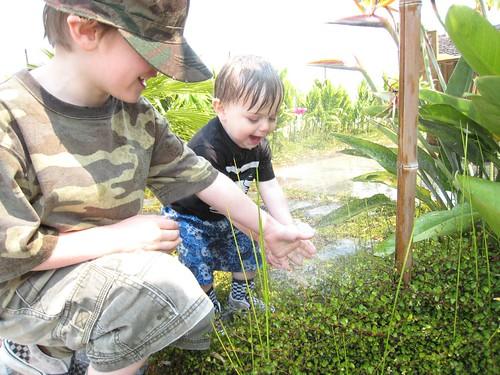 sprinklers, water play, baby, babies, toddler IMG_3689
