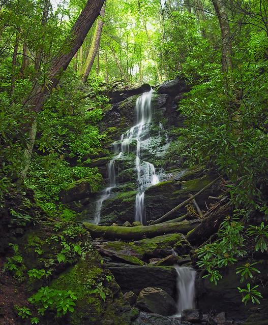 Nature Trail Health Care Center Mt Vernon Il