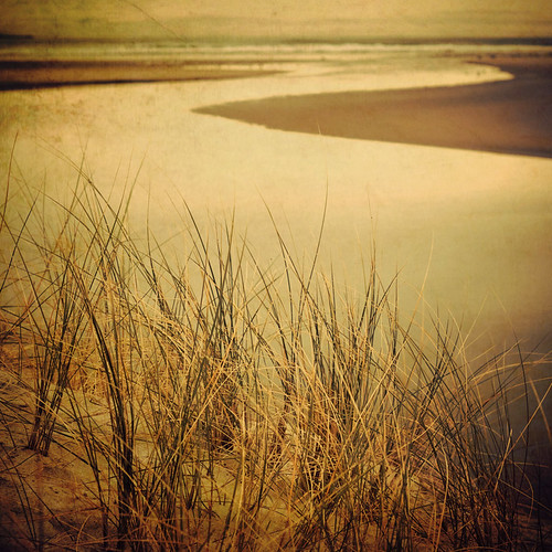 sea newzealand beach grass square sand waves estuary nz otago dunedin nff bsquare pentax50mmf17 artlibre infinestyle waldronville thankspareeerica ©borealnz