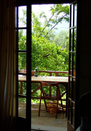 greek view greece veranda hellenic aigio achaia peleonnese mondodendri