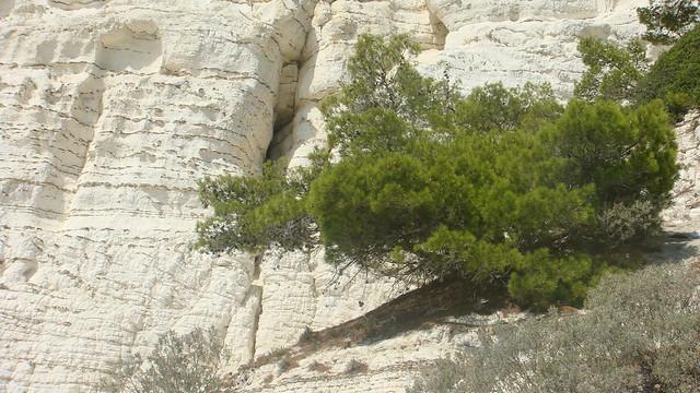 Puglia, Gargano, parques nacionales