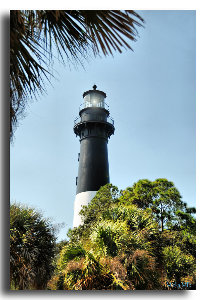 Hunting Island, SC Light House - Download Photo - Tomato to