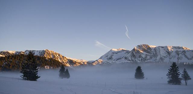 Brouillard sur le plateau