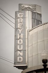 Go Greyhound