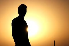 backlighting, yellow, sunlight, light, silhouette, morning, sunset,