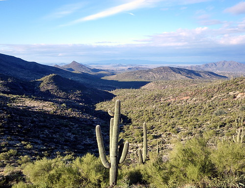 ranch arizona mountains southwest landscape hiking nationalforest saguaro tonto sonorandesert hikes cavecreek blackmesa tontonationalforest spurcross azhike alhikesaz intphoenix