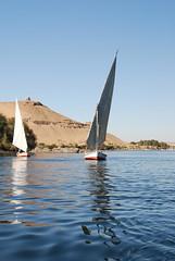 EGYPT January 2008 (3) 192