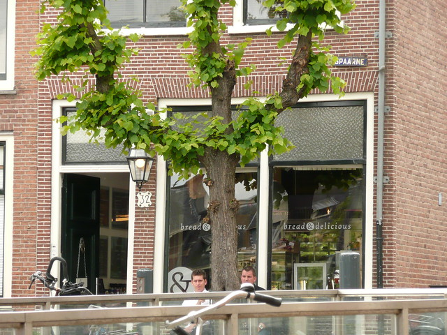 Header of Spaarne