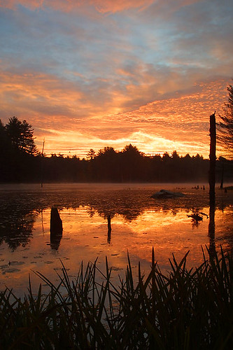 water sunrise pond beaverpond