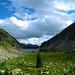 Kokanee Glacier Park Camping