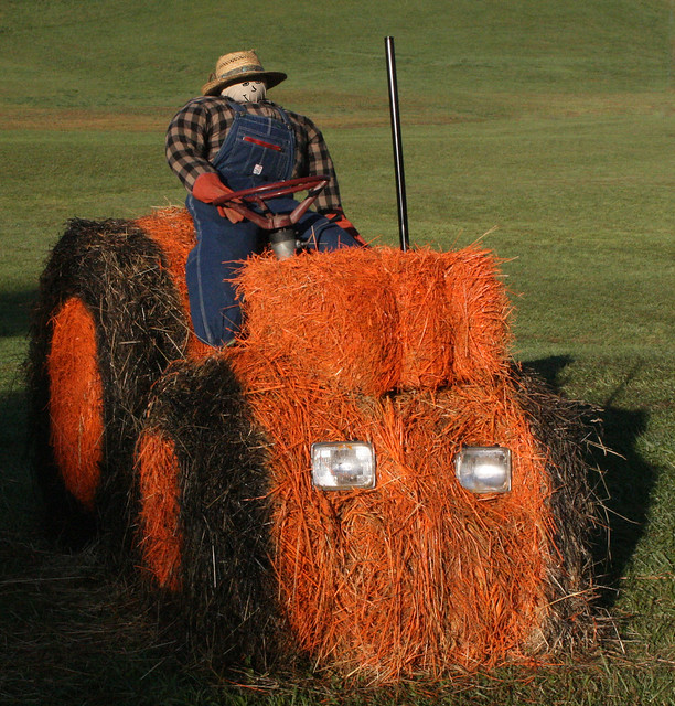 original farmer scarecrow costume | Flickr - Photo Sharing!