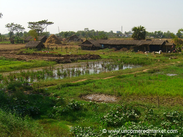 Village Life Outside Rangoon - Burma (Yangon, Myanmar)