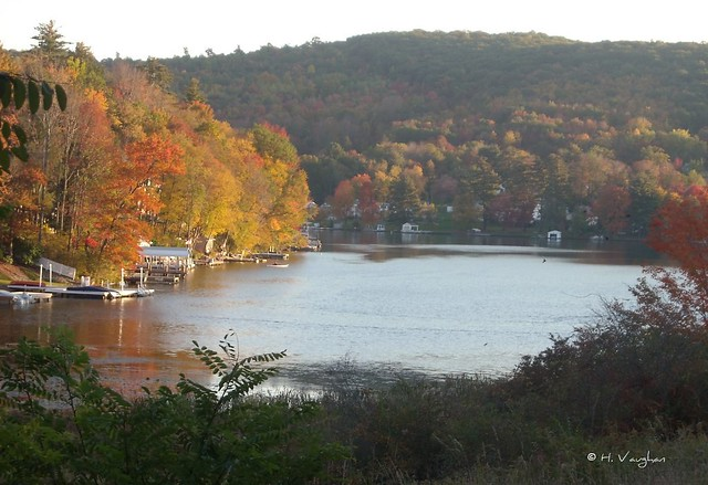 lake winola Lake road cafe in lake winola, pa verified diner reviews, deals, pictures and menus at restaurantcom.
