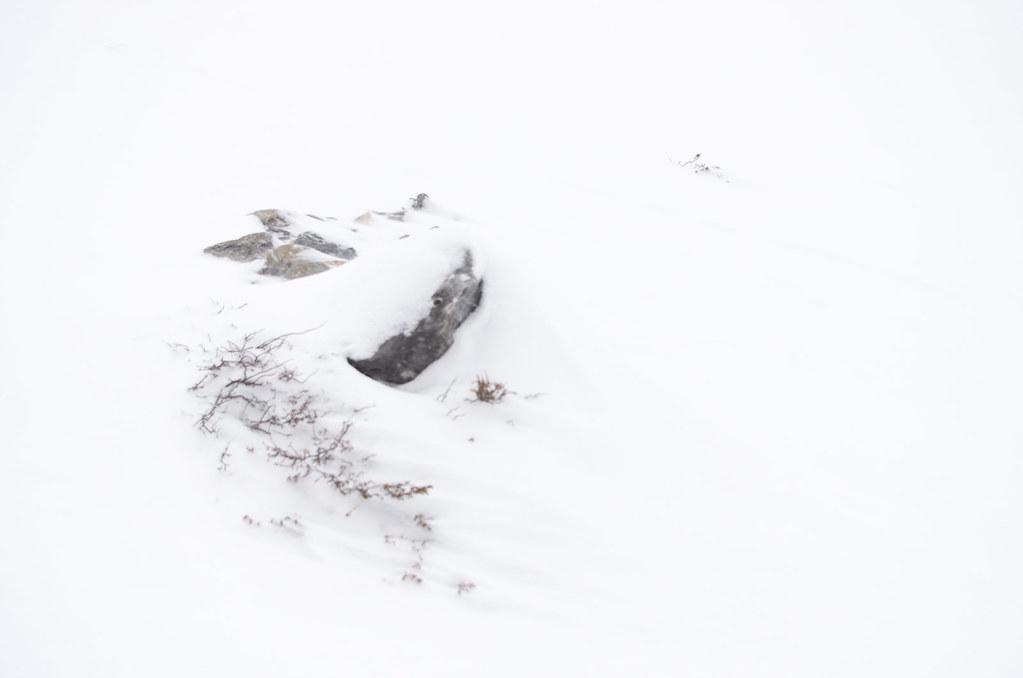 Parc naturel de la Vanoise - Randonnée à ski - partout la neige