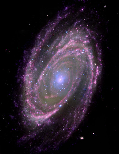 Black Holes Have Simple Feeding Habits (NASA, Chandra, 6/18/08)