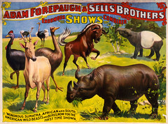 Wondrous Wild Beasts, poster for Forepaugh & Sells Brothers, ca. 1897